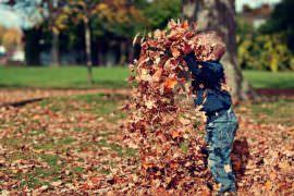 Chłopiec rzucający liśćmi