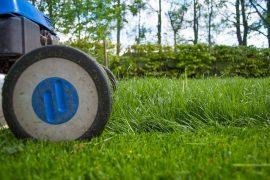 Koszenie trawnika kosiarką